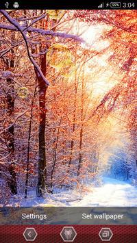Winter Live Wallpaper screenshot 6