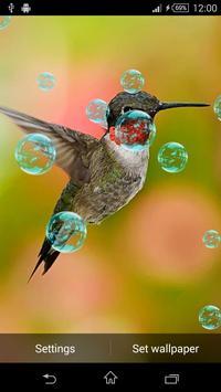 3D Bird Live Wallpaper screenshot 3
