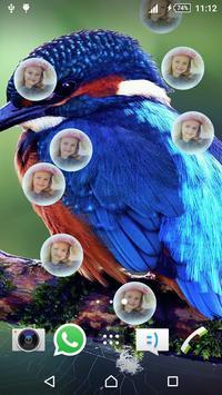 3D Bird Live Wallpaper screenshot 1