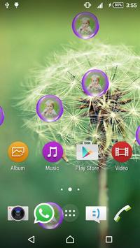 Dandelion Live Wallpaper apk screenshot