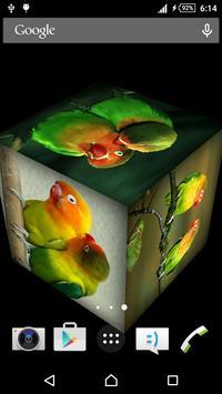 Love Bird Live Wallpaper poster