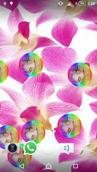 Petals Live Wallpaper screenshot 2