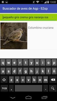 Aves de Arequipa - Peru screenshot 7