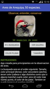 Aves de Arequipa - Peru poster