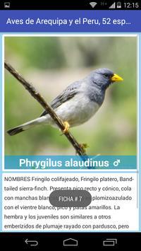 Aves de Arequipa - Peru screenshot 2