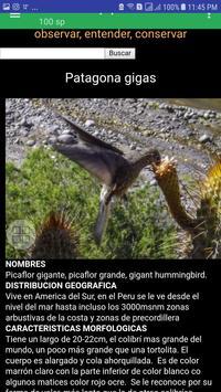 Birds of Arequipa screenshot 5