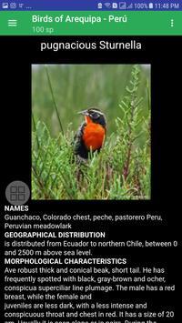 Birds of Arequipa screenshot 6