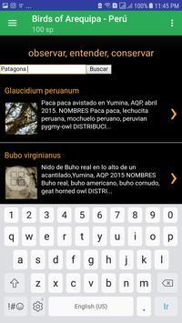 Birds of Arequipa screenshot 3