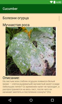 cucumber(огурец) screenshot 1