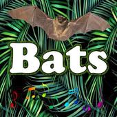 Best Bats sounds icon
