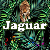 Best Jaguar  Sounds icon