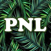 Paroles de chanson PNL icon
