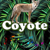 Best Coyote Sounds icon