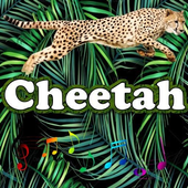 The best Cheetah Sounds icon