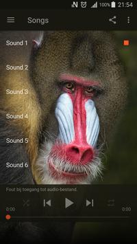 Best Baboon sounds poster
