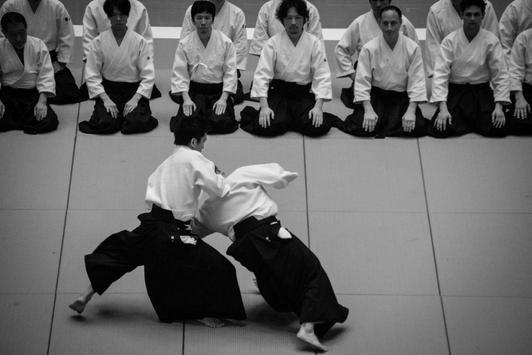 Aikido screenshot 4