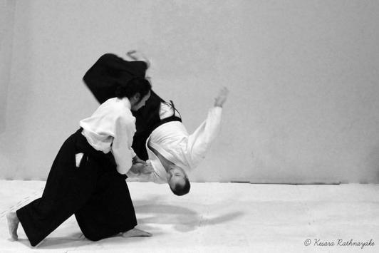 Aikido screenshot 5