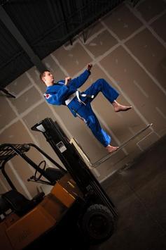Jiu-Jitsu screenshot 1