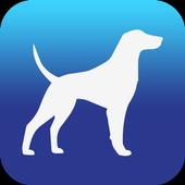 Pet Travel icon