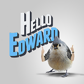 Hello Edward icon
