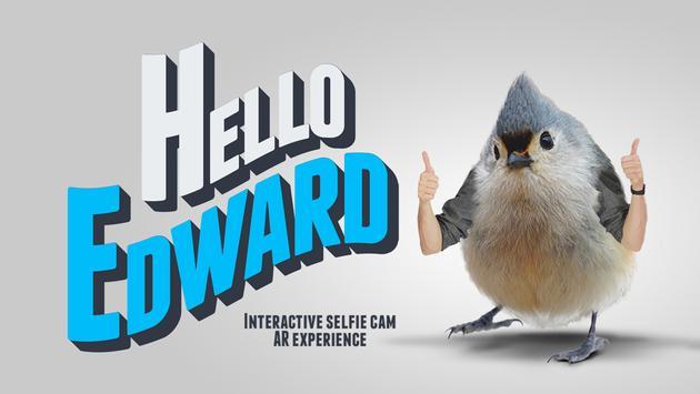 Hello Edward poster