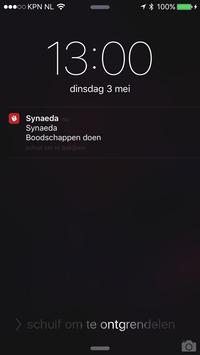 Synaeda App screenshot 5