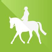 SafeRider Lite icon