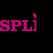 Split-Online Cursus App icon