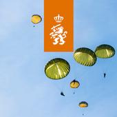 11 Luchtmobiele Brigade icon