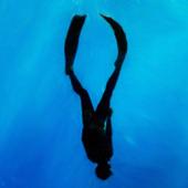 Freediver icon