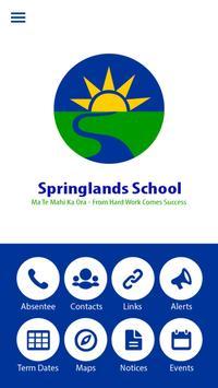 Springlands School poster