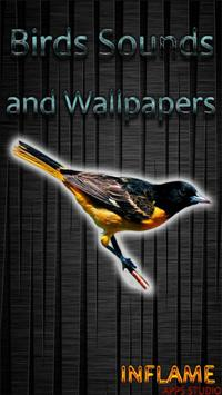 Birds Sounds and Wallpapers poster