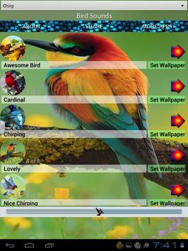 Birds Sounds and Wallpapers apk screenshot