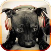 Dog Sounds icon