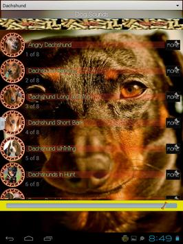 Dog Sounds apk screenshot