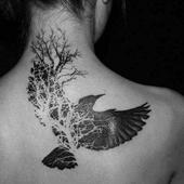 Eagle Tattoos icon