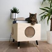 Indoor Cat House icon