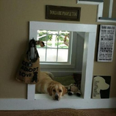 Indoor Dog House icon