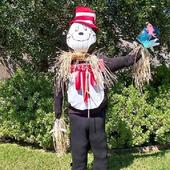 Scarecrow Ideas icon