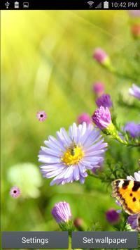 Garden Flowers LWP poster