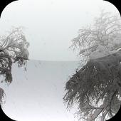 Snow 3D Video Live Wallpaper icon