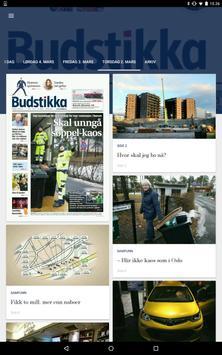 Budstikka screenshot 5