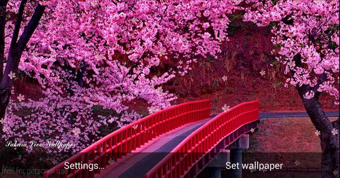 Sakura HD Live Wallpaper screenshot 3