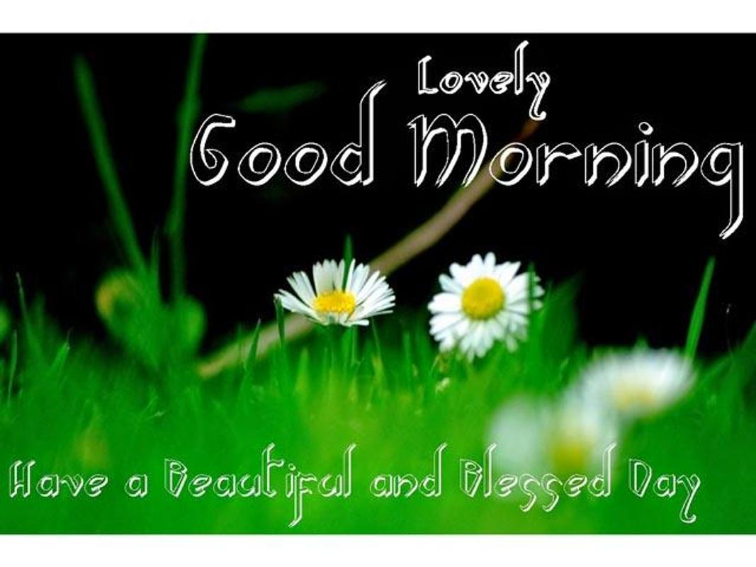 Cute Good Morning Wallpapers For Android Apk Download