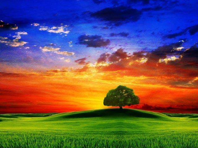 3d Hd Nature Mobile Wallpapers For Android Apk Download