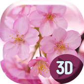 Sakura Flowers HD Live Wallpap icon