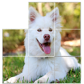 free dog puzzles icon