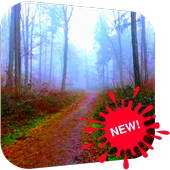Scary Forest Video LWP icon