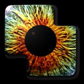 Schizoid puzzle Free icon