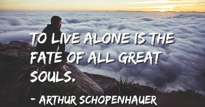 Schopenhauer Quotes poster